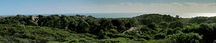 Trigg Bushland and Indian Ocean Panorama
